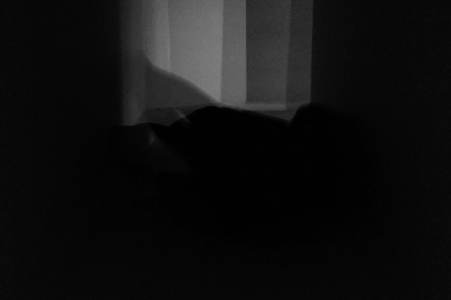 b/w,  '1'5'',  on loop,  silent,  2014